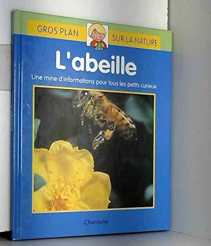 L'abeille : Une mine d'informations pour tous les petits curieux